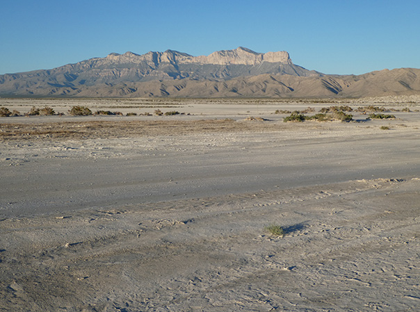 Playas in Salt Basin, New Mexico, with Guadalupe Mountains in background. Photo by Shari Kelley