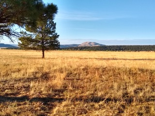 View of Cerro Pelon from Twin Willows Ranch near Ocate, NM.